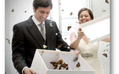 Suelta de Mariposas en una Boda